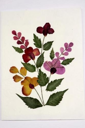 Grußkarte, Trockenblumen